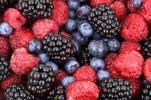 Antiossidanti - Dr. Alessandro Losito - Biologo nutrizionista